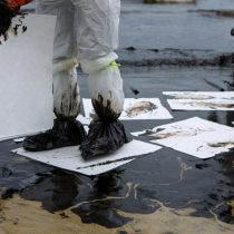 Absorbent pads being used to clean up an oil spill